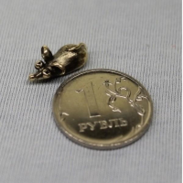 Василиска Кошельковая медная мышка