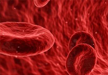Болезни крови